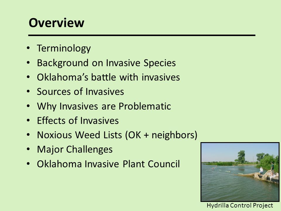 Overview Terminology Background on Invasive Species