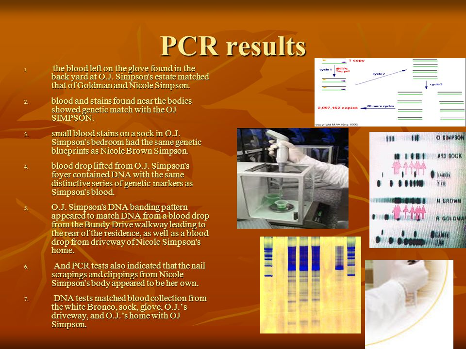 PCR results the blood left on the glove found in the back yard at O.J. Simpson s estate matched that of Goldman and Nicole Simpson.