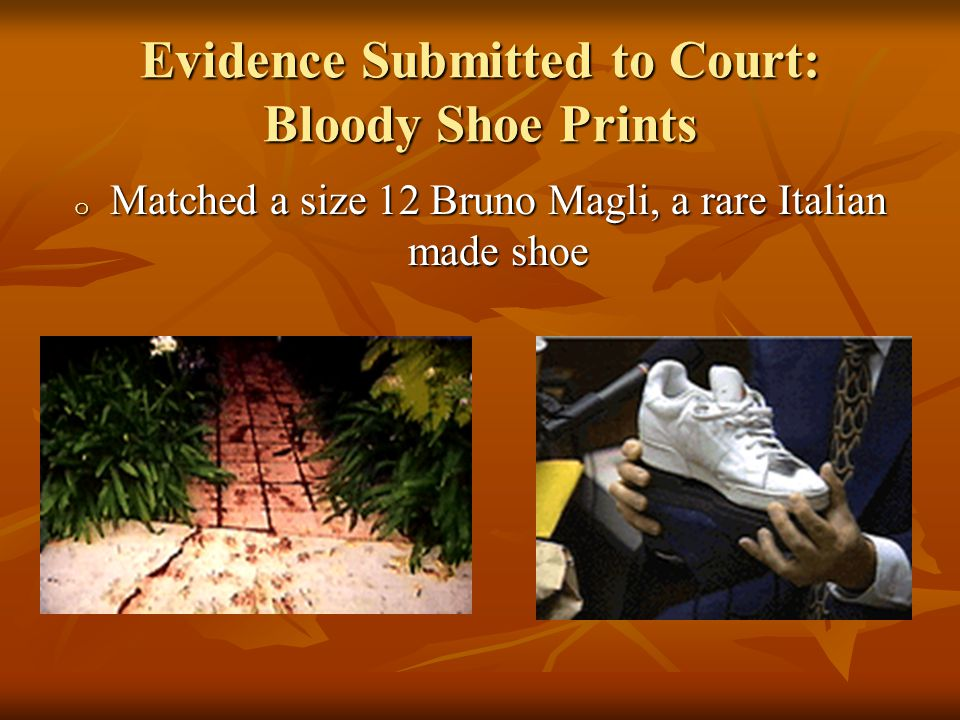 Evidence Submitted to Court: Bloody Shoe Prints