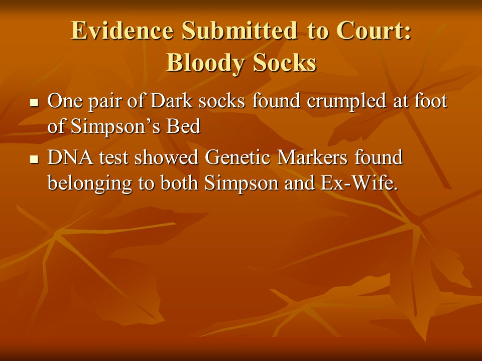 Evidence Submitted to Court: Bloody Socks