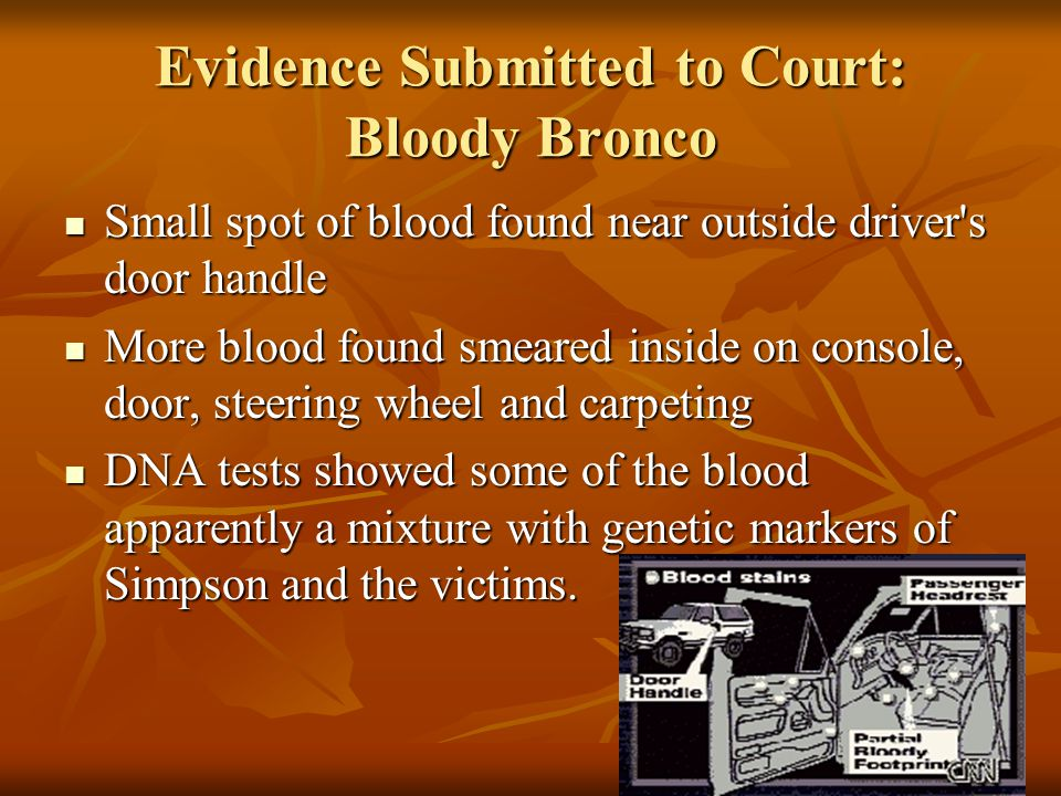 Evidence Submitted to Court: Bloody Bronco