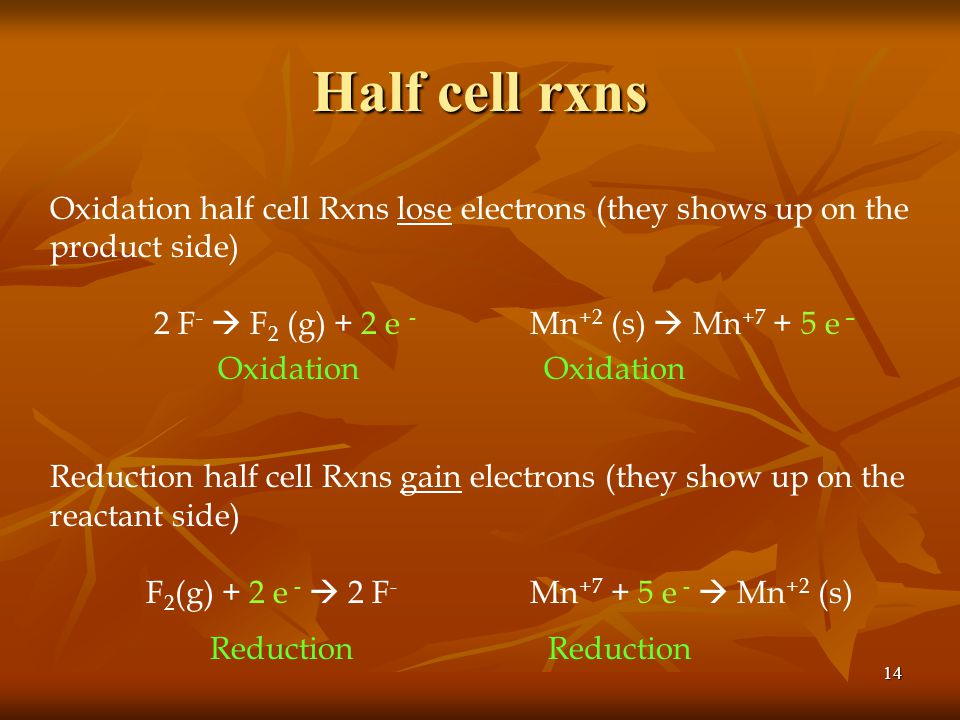 Half cell rxns Oxidation half cell Rxns lose electrons (they shows up on the product side) 2 F-  F2 (g) + 2 e - Mn+2 (s)  Mn+7 + 5 e –