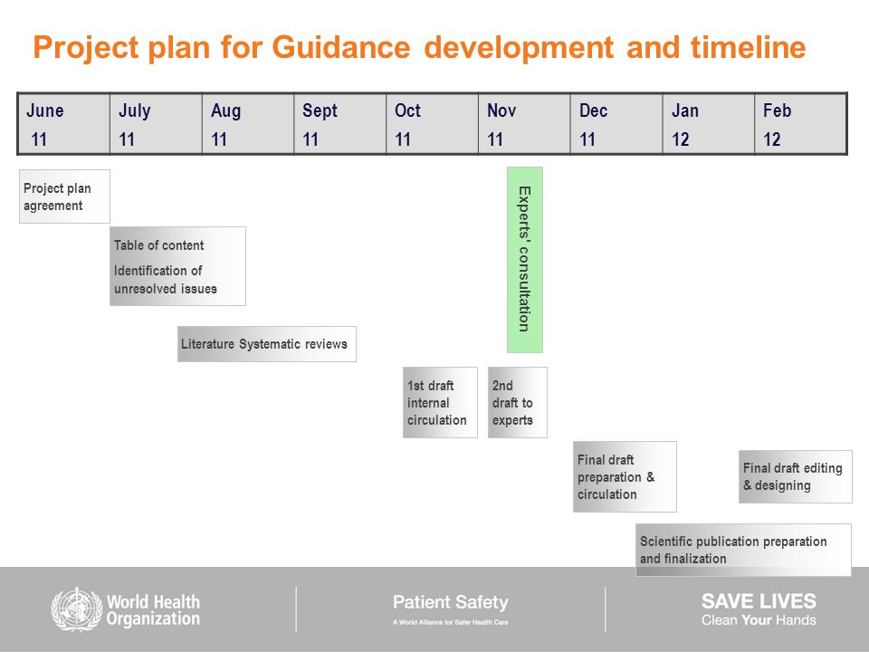Project plan for Guidance development and timeline
