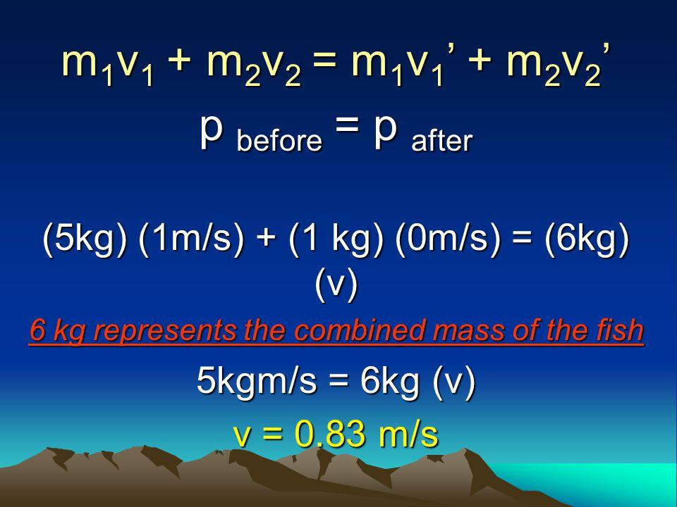 m1v1 + m2v2 = m1v1' + m2v2' p before = p after