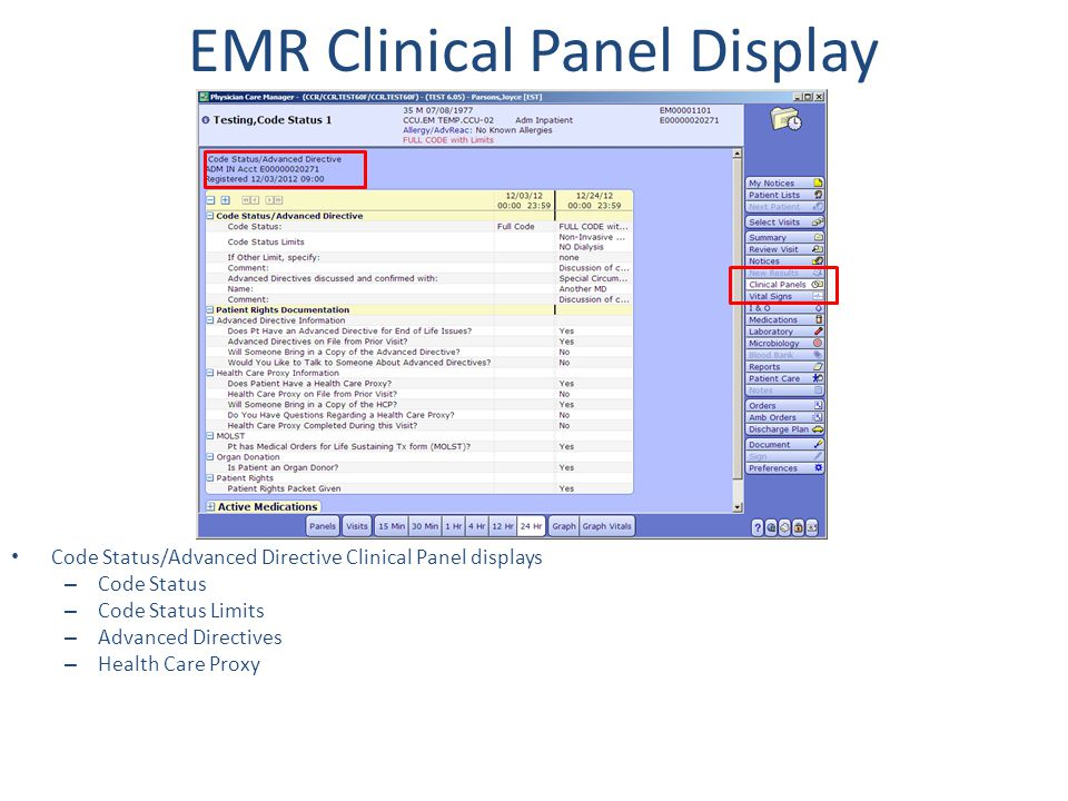 EMR Clinical Panel Display