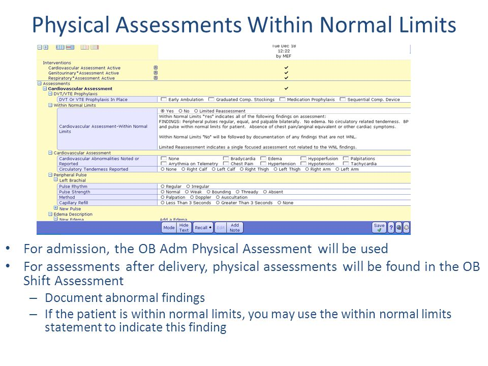 Physical Assessments Within Normal Limits