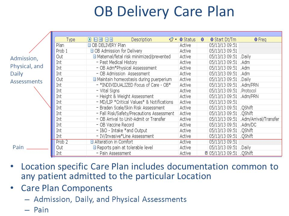 OB Delivery Care Plan Admission, Physical, and Daily Assessments. Pain.