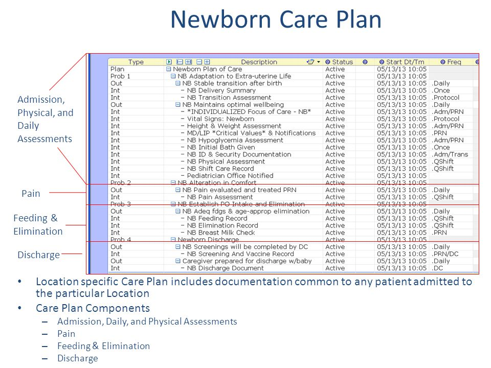 Newborn Care Plan Admission, Physical, and Daily Assessments. Pain. Feeding & Elimination. Discharge.