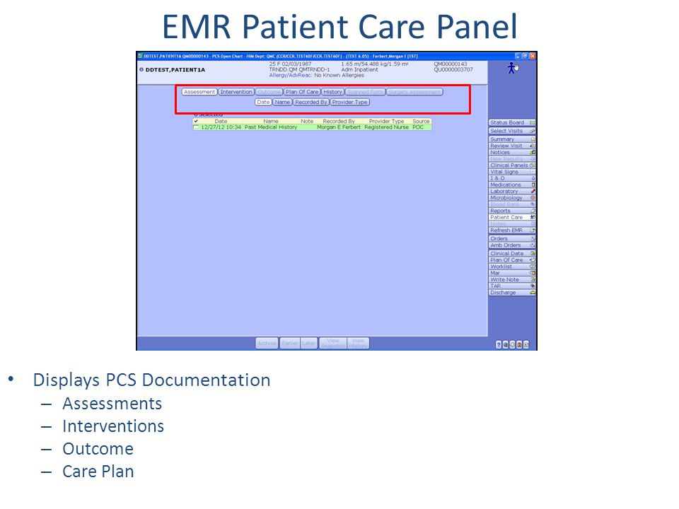 EMR Patient Care Panel Displays PCS Documentation Assessments