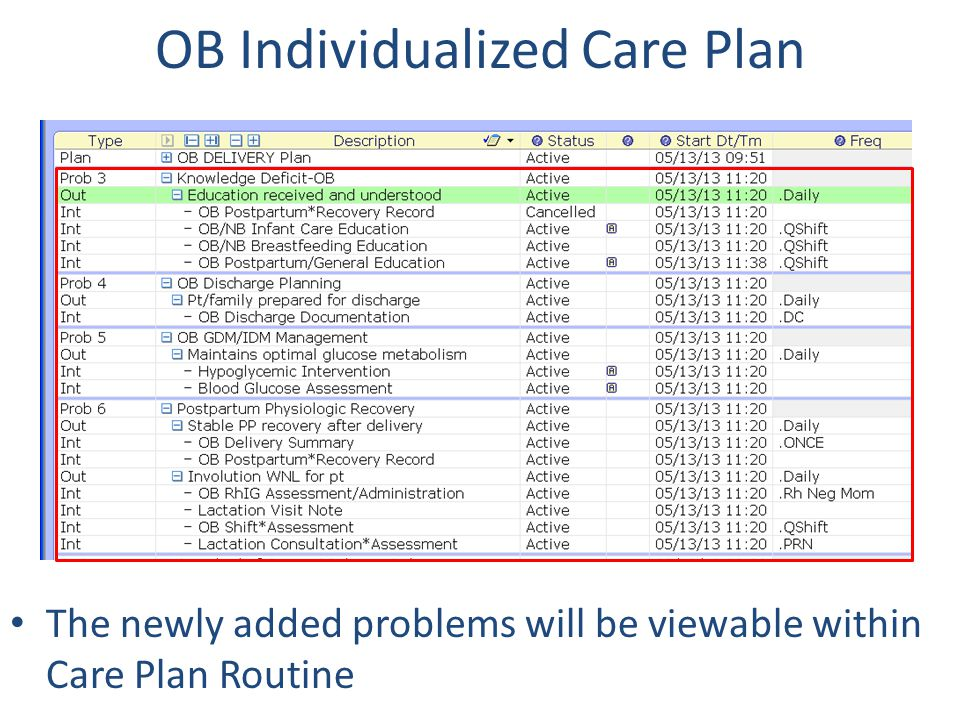 OB Individualized Care Plan