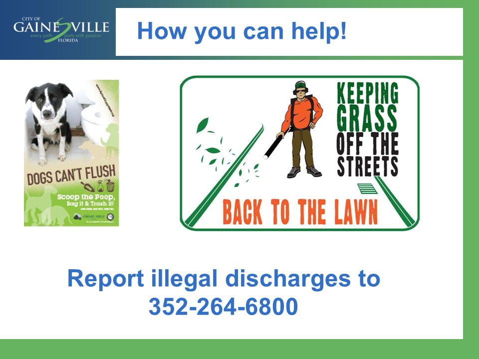 Report illegal discharges to 352-264-6800
