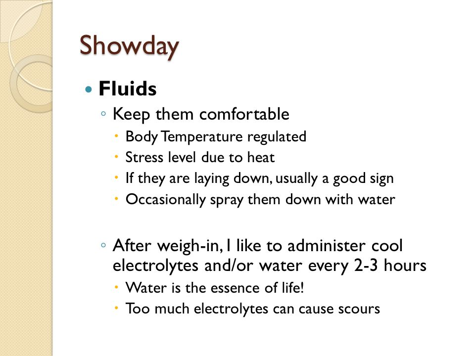Showday Fluids Keep them comfortable