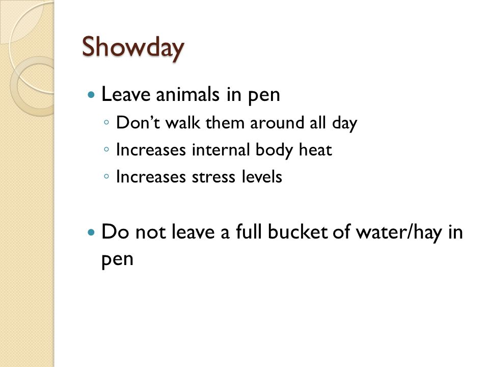 Showday Leave animals in pen