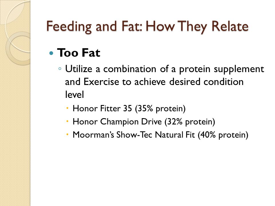 Feeding and Fat: How They Relate