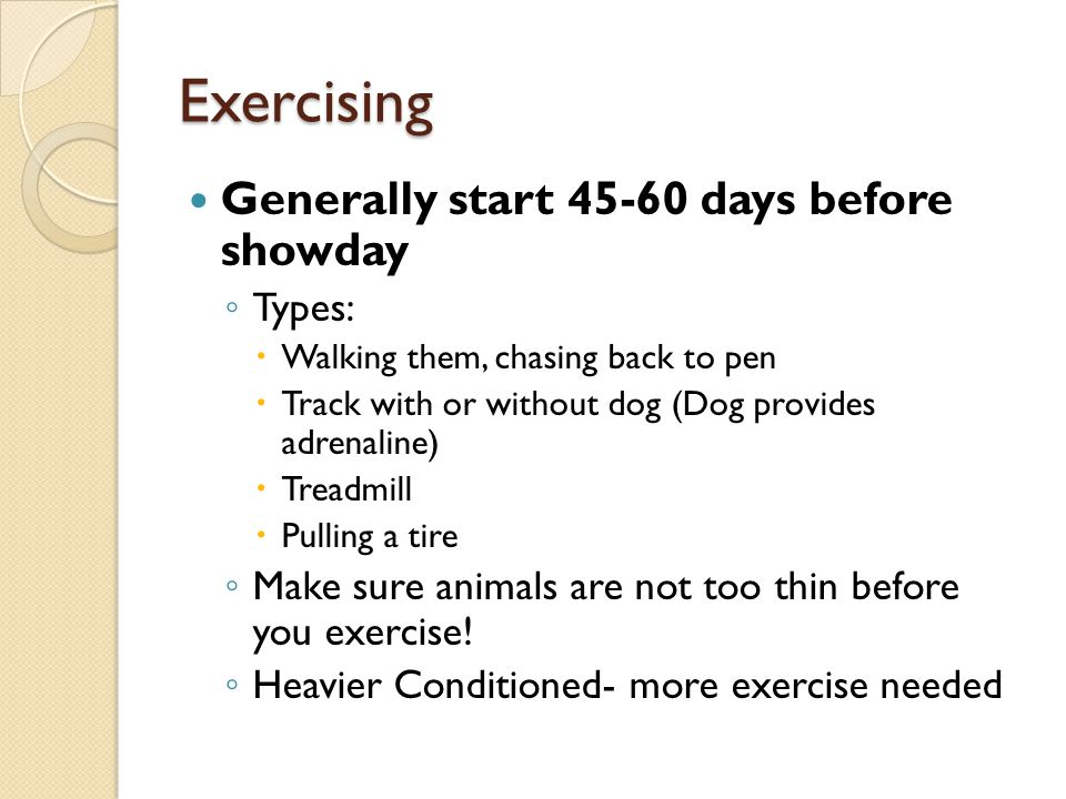 Exercising Generally start 45-60 days before showday Types: