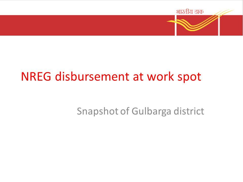 NREG disbursement at work spot