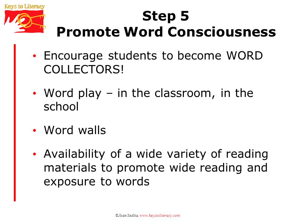 Step 5 Promote Word Consciousness