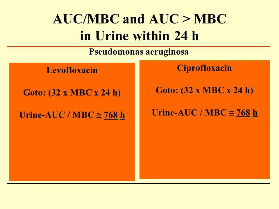 AUC/MBC and AUC > MBC in Urine within 24 h