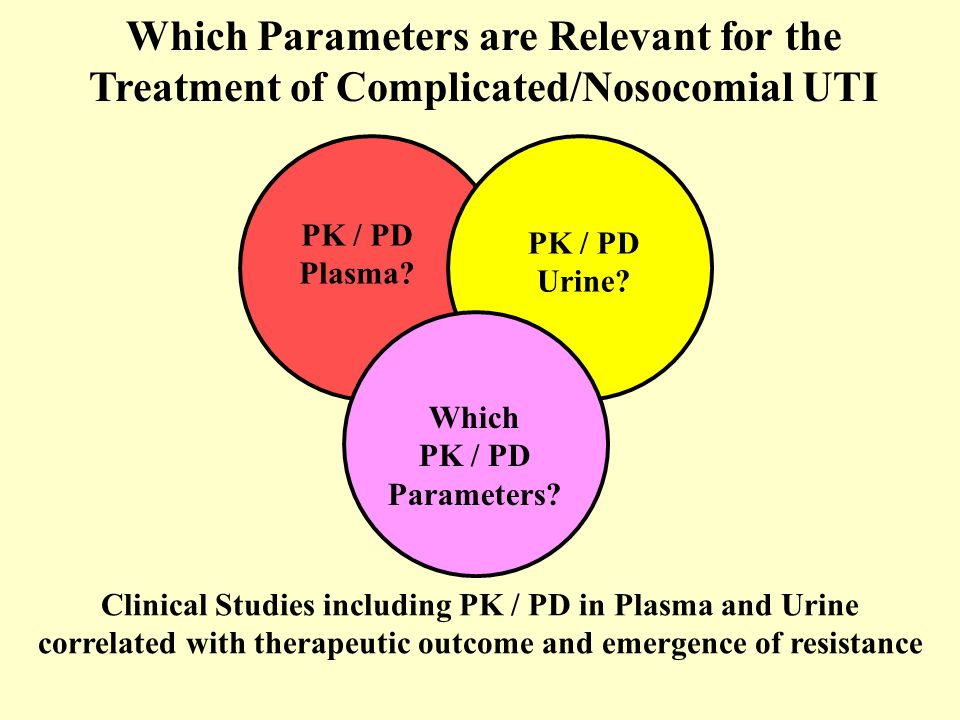 Which Parameters are Relevant for the Treatment of Complicated/Nosocomial UTI