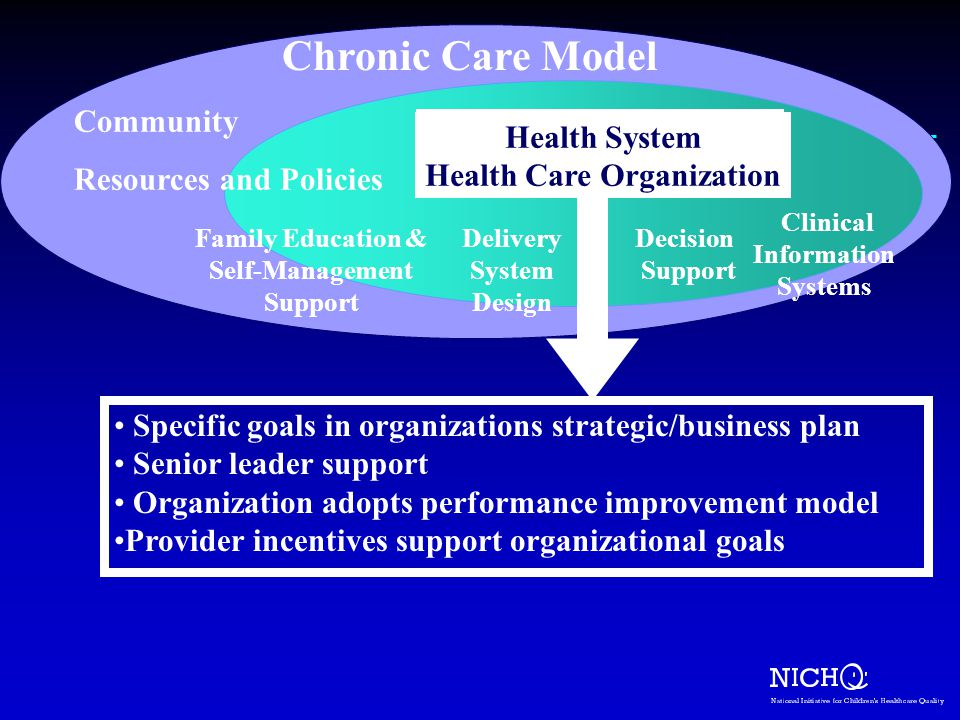 Chronic Care Model Community Health System Health System