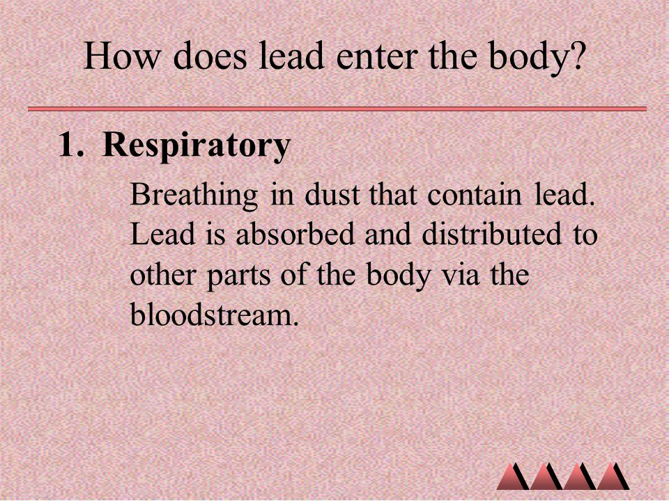 How does lead enter the body
