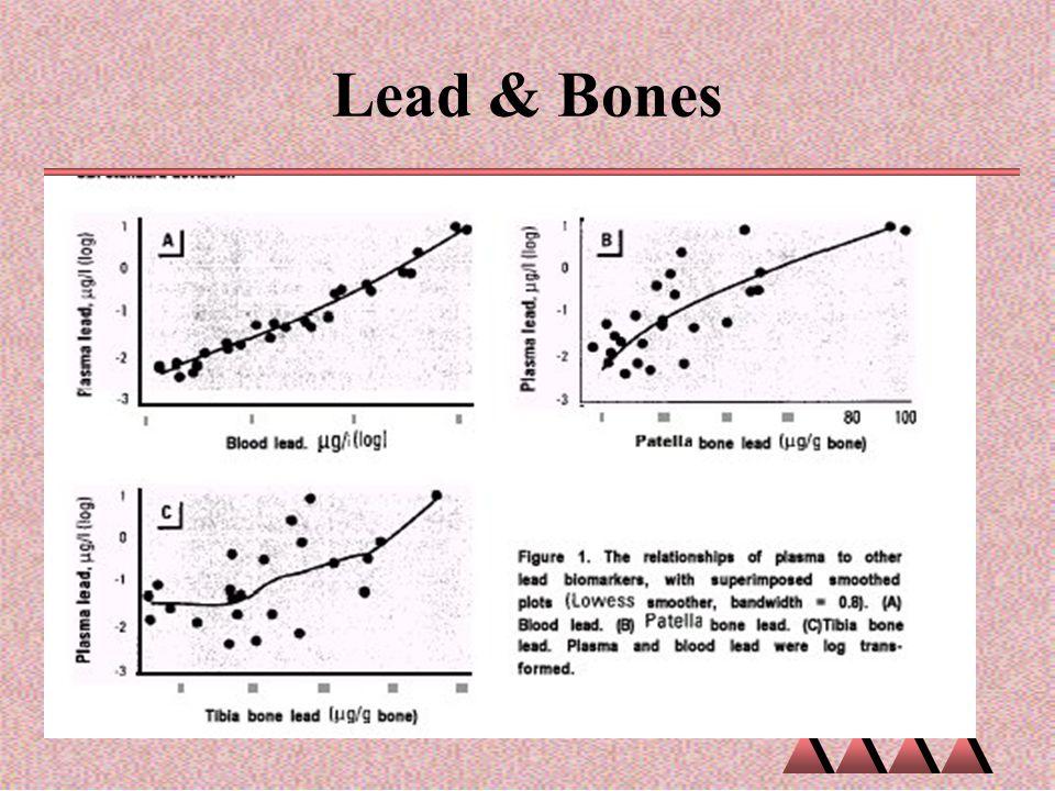 Lead & Bones Lead and Bones