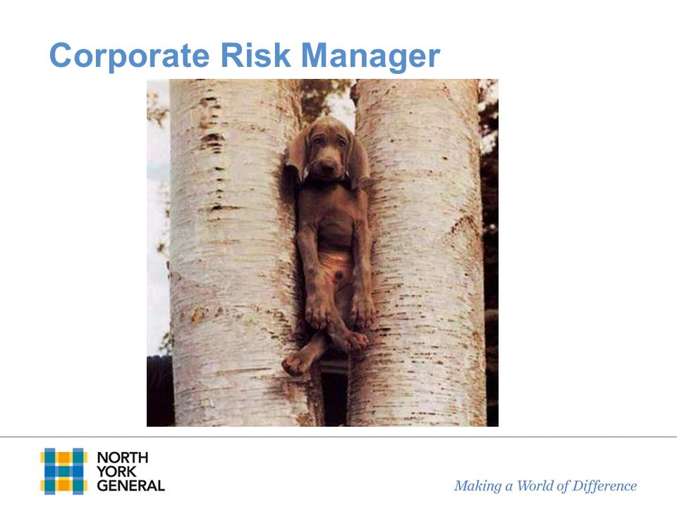 Corporate Risk Manager