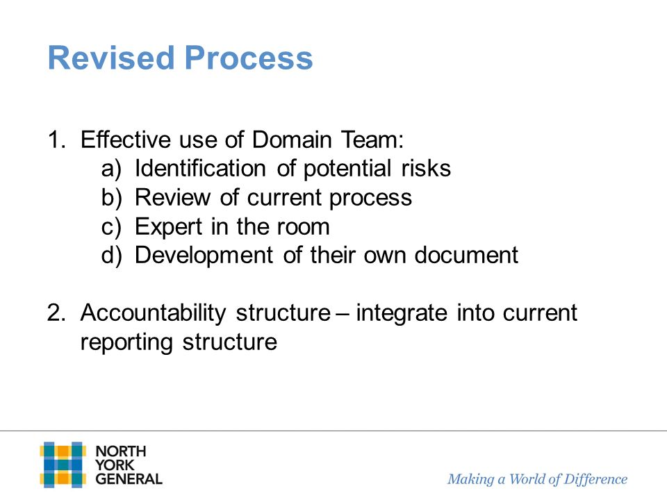 Revised Process Effective use of Domain Team: