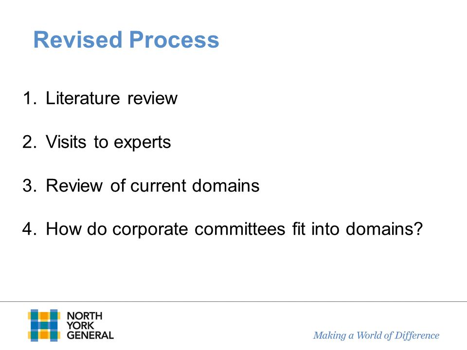 Revised Process Literature review Visits to experts