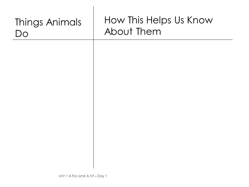 How This Helps Us Know About Them Things Animals Do