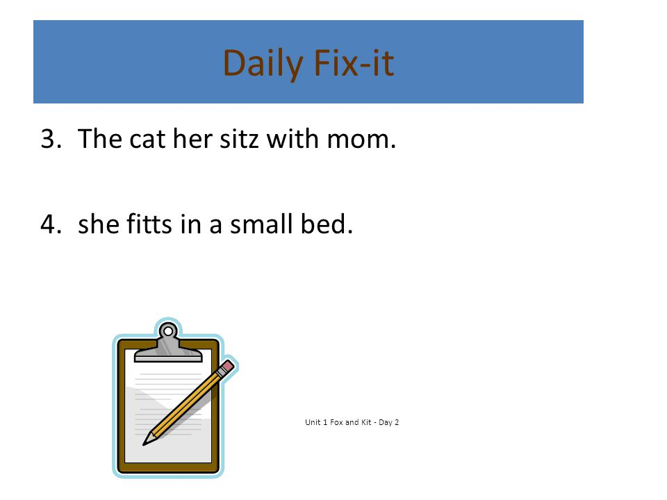 Daily Fix-it The cat her sitz with mom. she fitts in a small bed.