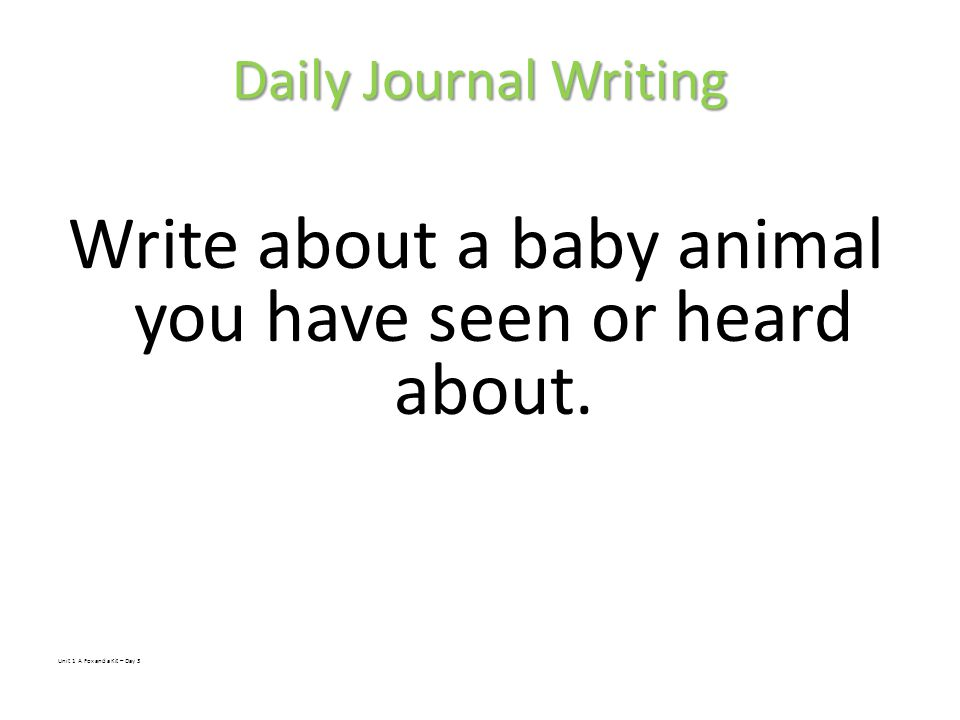 Write about a baby animal you have seen or heard about.