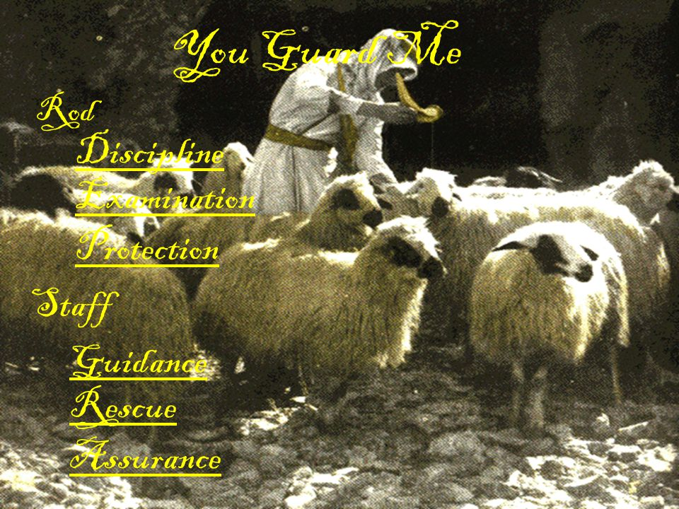 You Guard Me Discipline Examination Protection Staff Guidance Rescue
