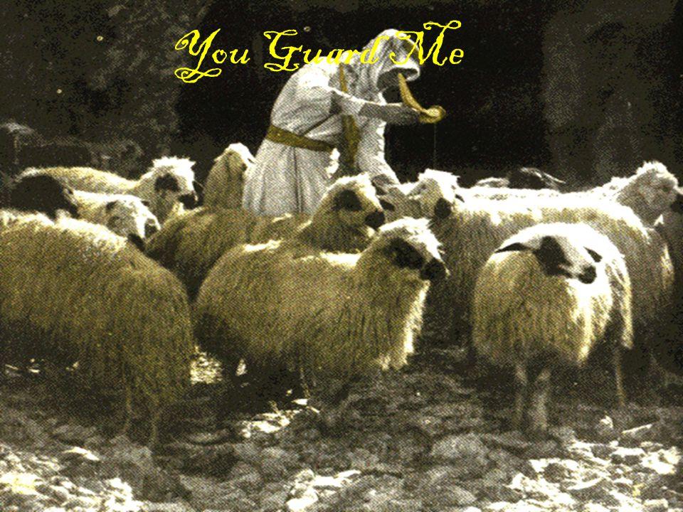 You Guard Me