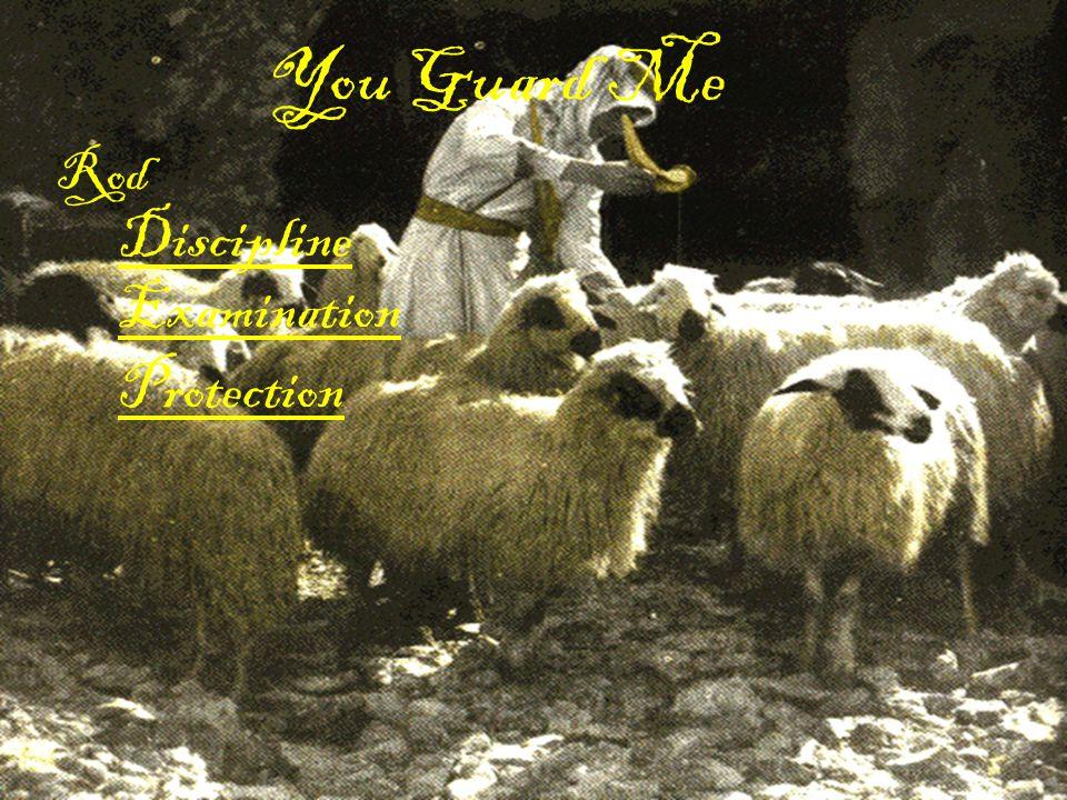 You Guard Me Rod Discipline Examination Protection