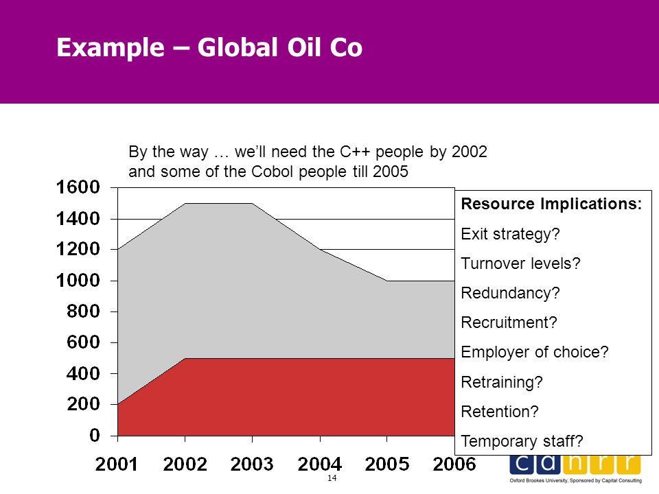 Example – Global Oil Co By the way … we'll need the C++ people by 2002 and some of the Cobol people till 2005.