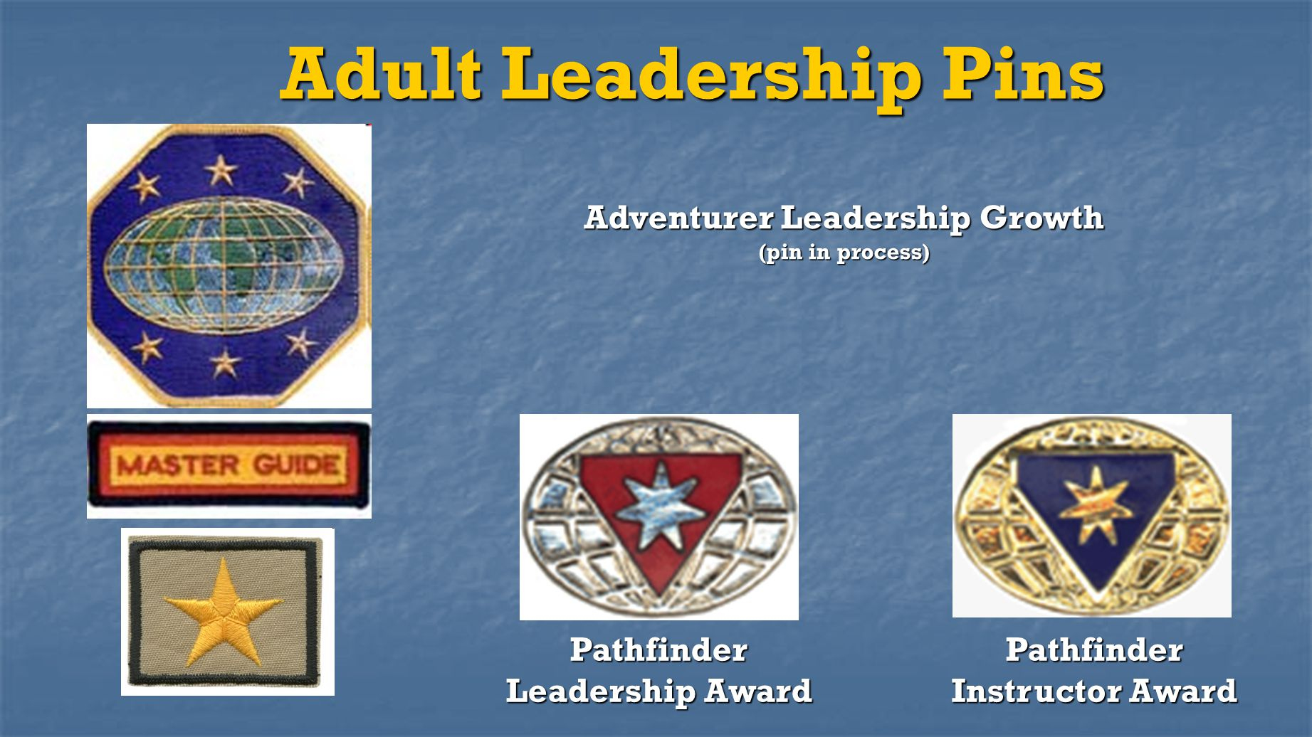 Adult Leadership Pins Adventurer Leadership Growth (pin in process)