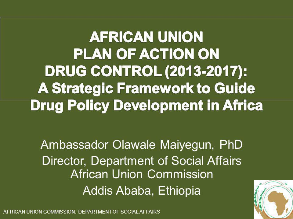 A Strategic Framework to Guide Drug Policy Development in Africa