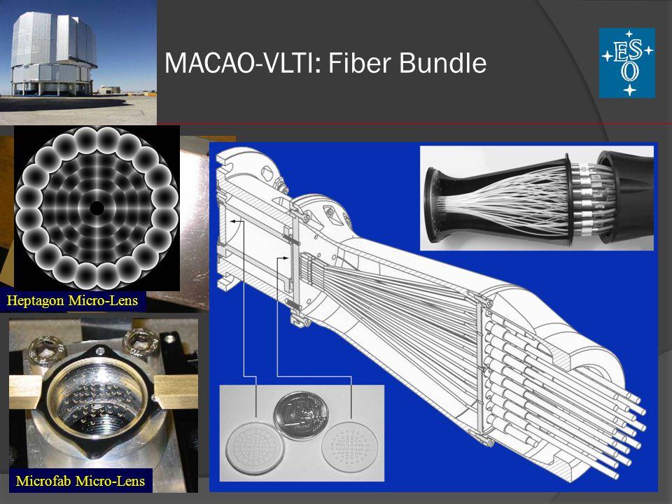 MACAO-VLTI: Fiber Bundle