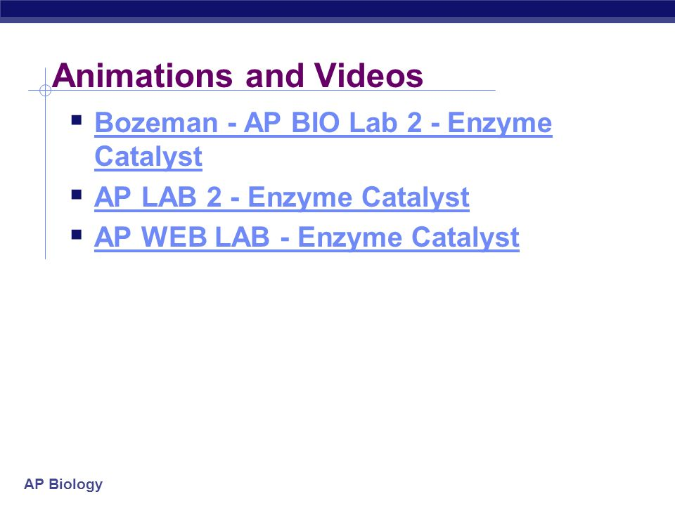 Animations and Videos Bozeman - AP BIO Lab 2 - Enzyme Catalyst