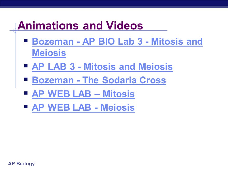 ap bio mitosis and meiosis Events common to both mitosis and meiosis that ensure the proper allocation of chromosomes to daughter cells students were then asked to describe two features of mitosis and meiosis that result in the.