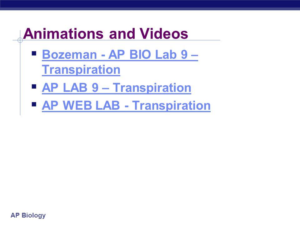 Animations and Videos Bozeman - AP BIO Lab 9 – Transpiration