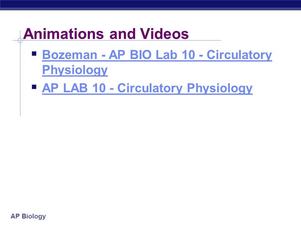 Animations and Videos Bozeman - AP BIO Lab 10 - Circulatory Physiology