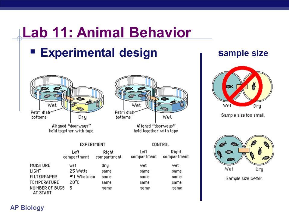 Lab 11: Animal Behavior Experimental design sample size