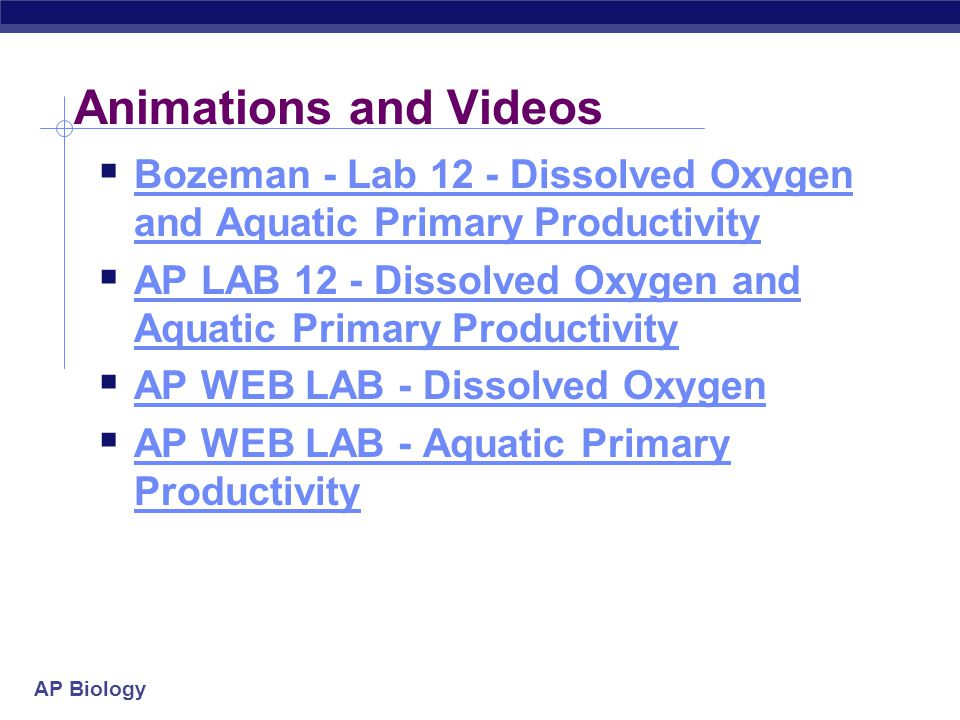 Animations and Videos Bozeman - Lab 12 - Dissolved Oxygen and Aquatic Primary Productivity.