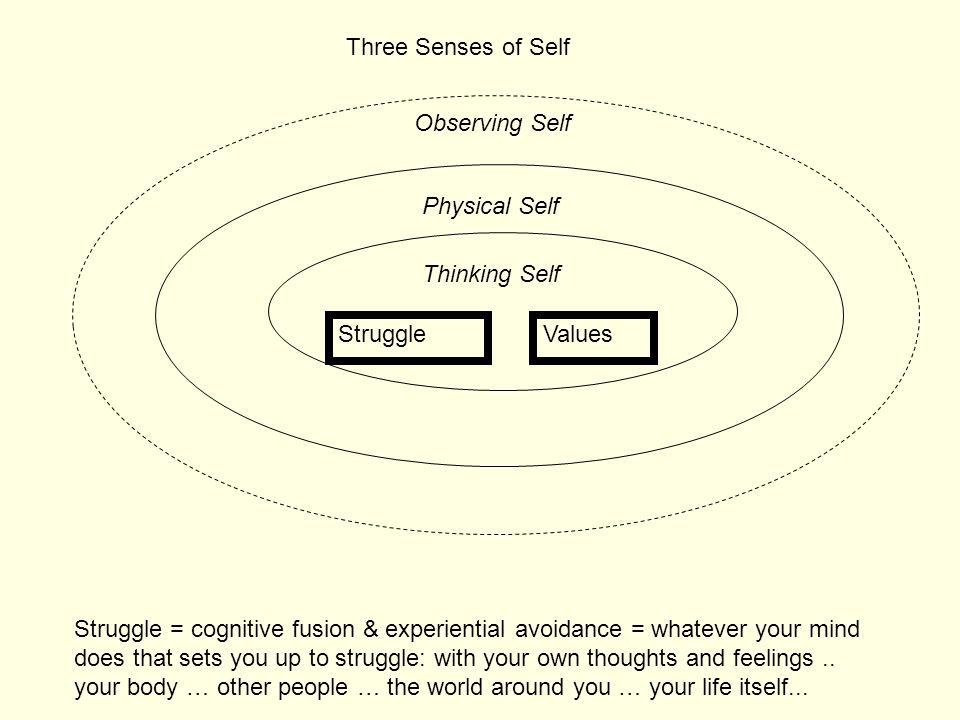 Three Senses of Self Observing Self. Physical Self. Thinking Self. Struggle. Values.