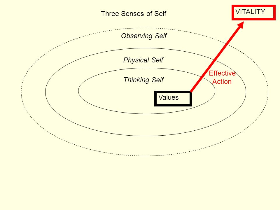 VITALITY Three Senses of Self Observing Self Physical Self Effective Action Thinking Self Values