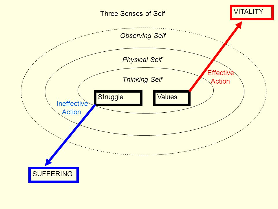 VITALITY Three Senses of Self. Observing Self. Physical Self. Effective. Action. Thinking Self.