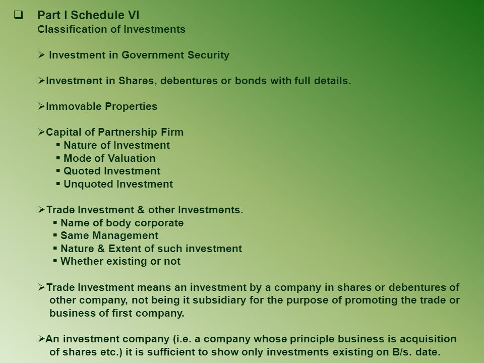Part I Schedule VI Investment in Government Security