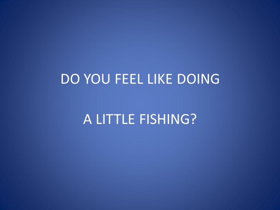 DO YOU FEEL LIKE DOING A LITTLE FISHING